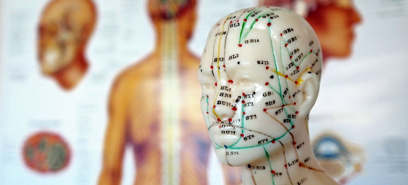 Foto: Kopf eines Akupunktur-Models aus Porzellan. Im Hintergrund verschwommen anatomische Lehrtafel