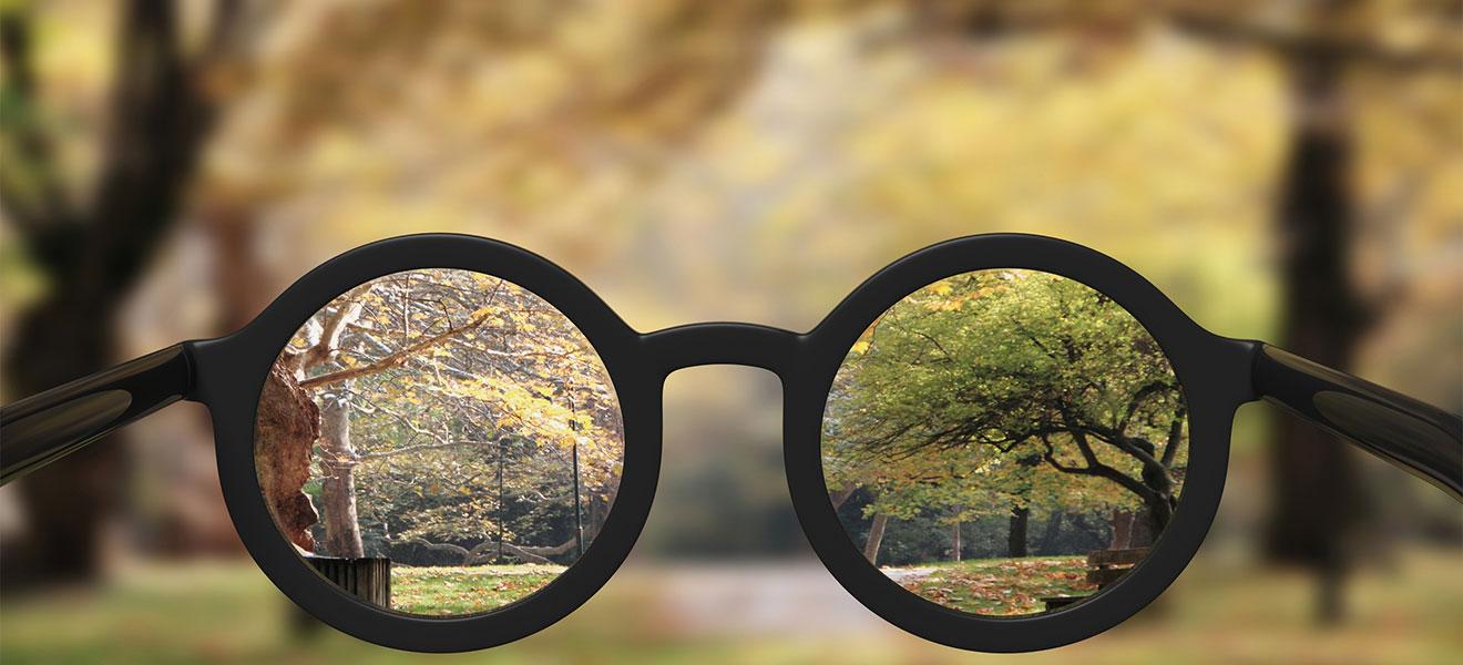 Foto: Blick in ein Brillengestell mit runden Gläsern und scharfen Inhalt (Bäume in der Natur) am unteren Bildrand. Hintergrund des selben Motives sehr verschwommen